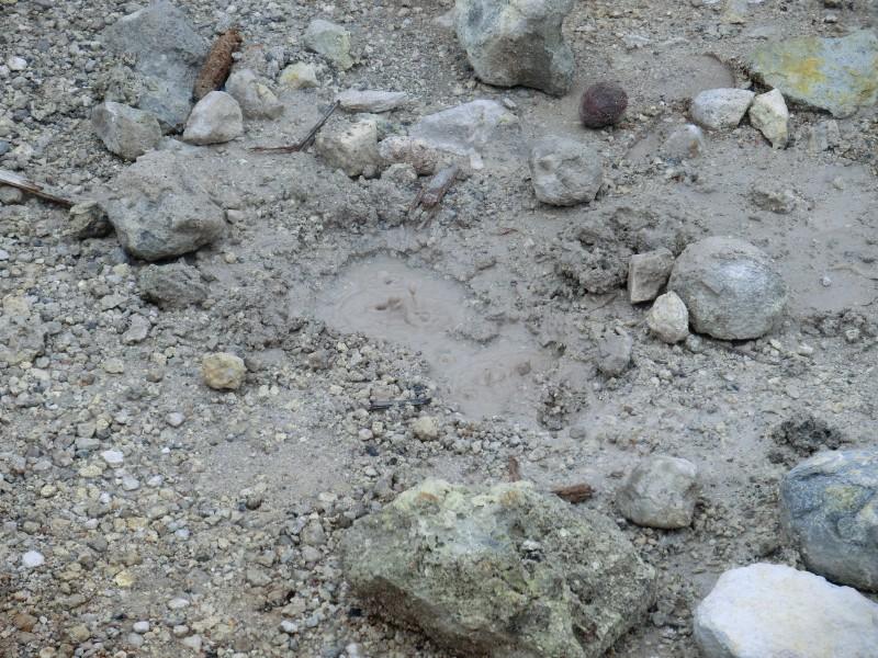 Miniquellen rund um den Krater
