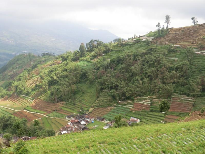 Ausblick vom Dieng-Plateau (2)